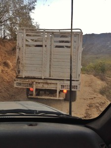 The 'bestias' traveled in this truck.