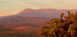 Sierra de la Laguna at sunset. Picacho.