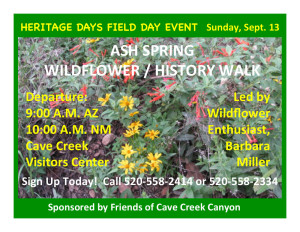 Wildflower and history walk in Cave Creek Canyon.