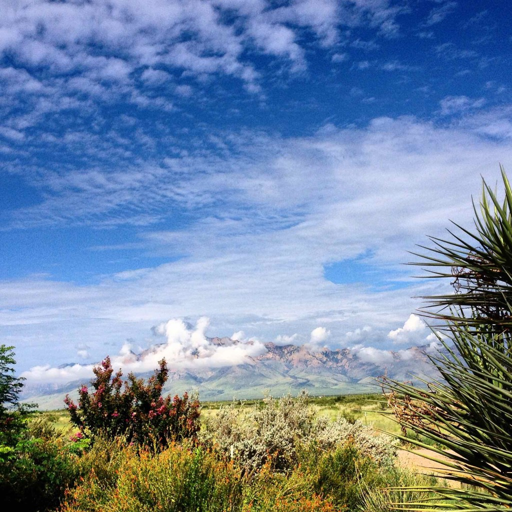 A view through the garden to the Chiricahua Mountains at the Painted Pony Resort.