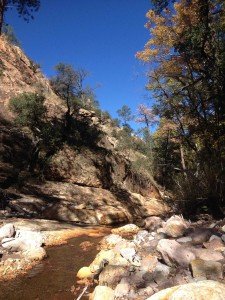 South Fork of Cave Creek