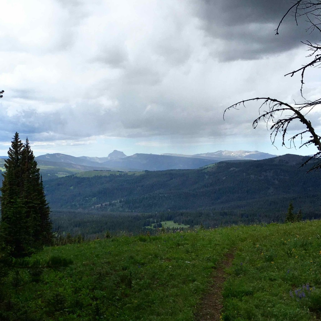 The view east from Bison Horn Pass towards Sphinx Mountain.