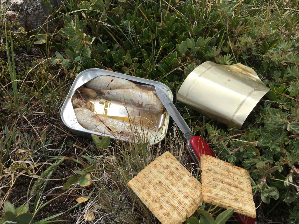 Smoked sardines are a good hiking snack