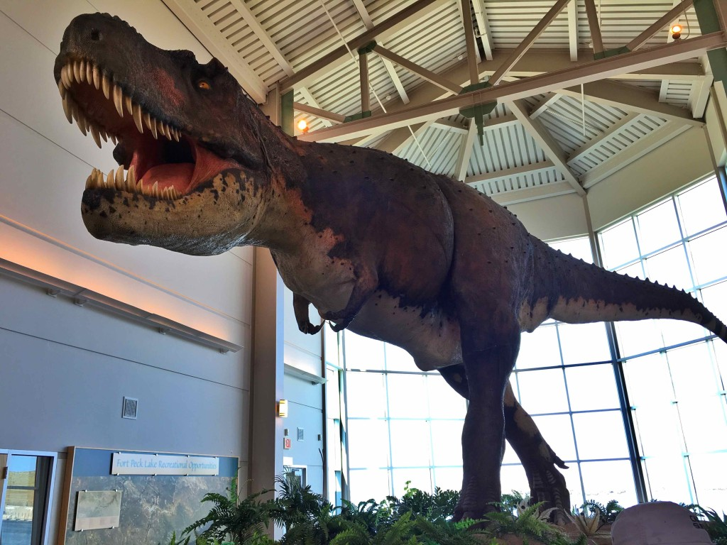 T. Rex greets visitors to the Fort Peck Interpretive Center.