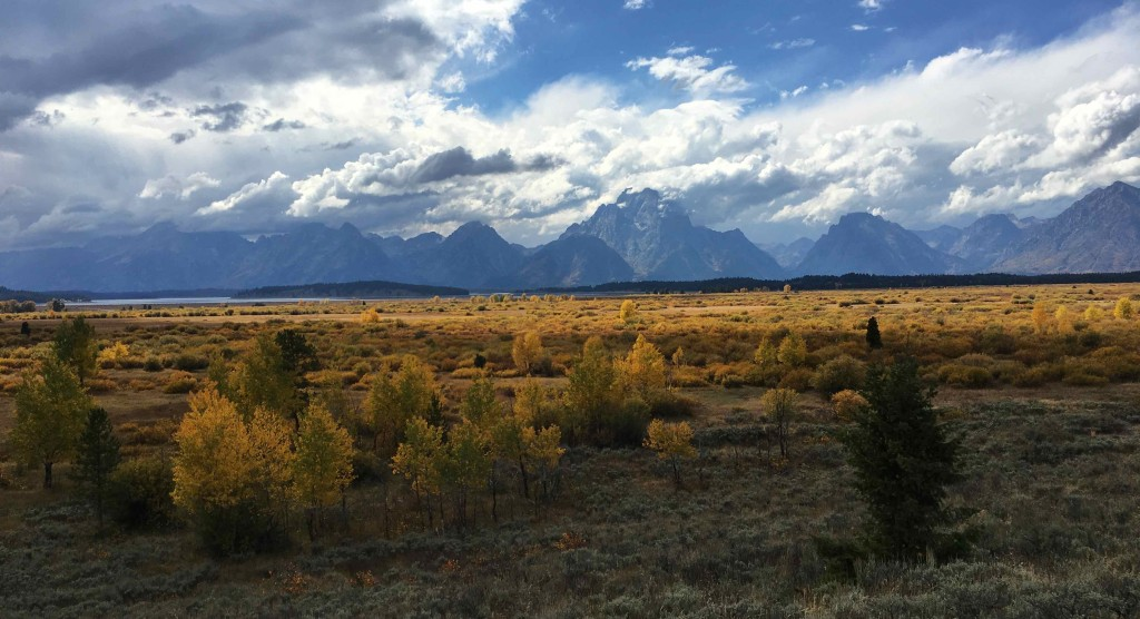 This is mostly the view I see when I visit the Tetons.