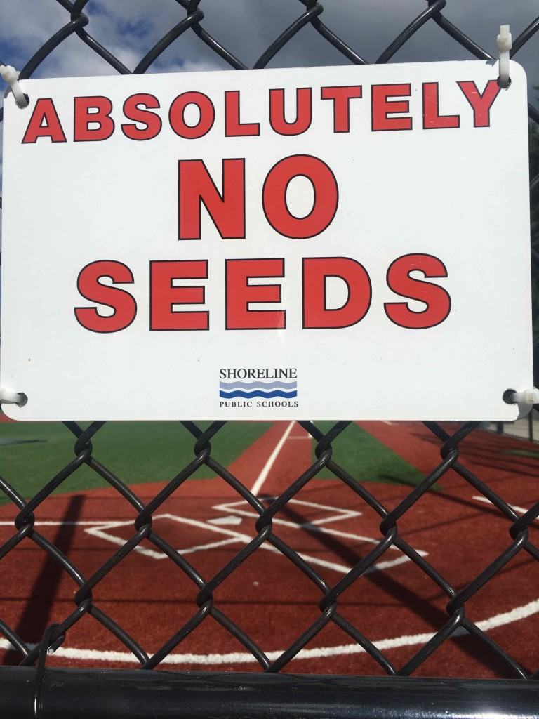 I found this very confusing.  Then Jolyn explained seeds are the new chewing tobacco.