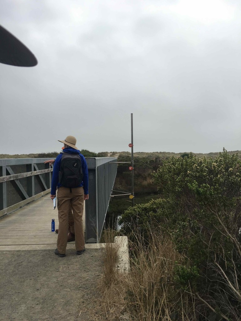 Bridge in Point Reyes National Seashore.