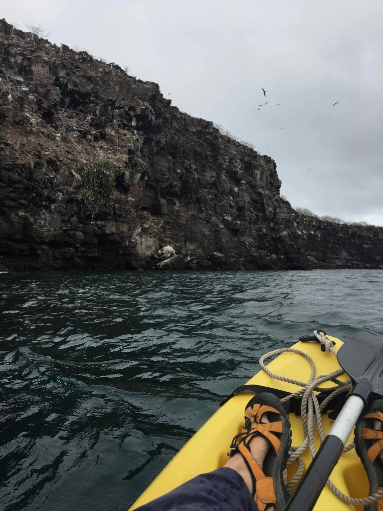 Sea kayaking along the wall of the crater.