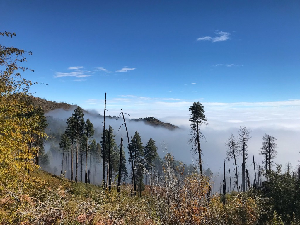 Fog below and blue skies above