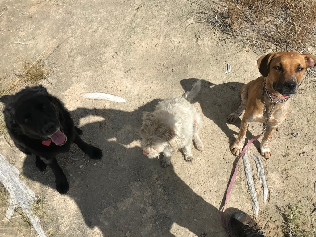 The three musketeers and my shadow.